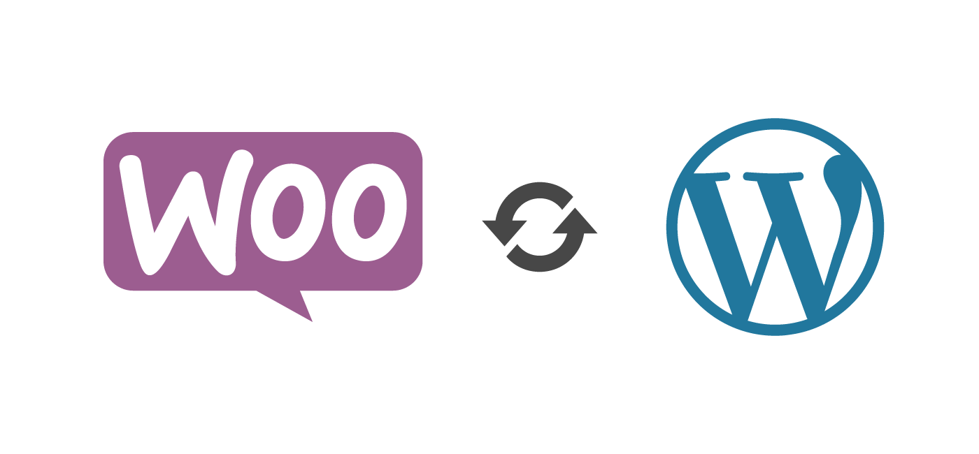 Read more about the article What is WordPress & Woocommerce?